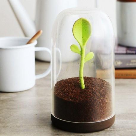 ظرف نگهدارنده چای و قهوه جوانه سایز بزرگ