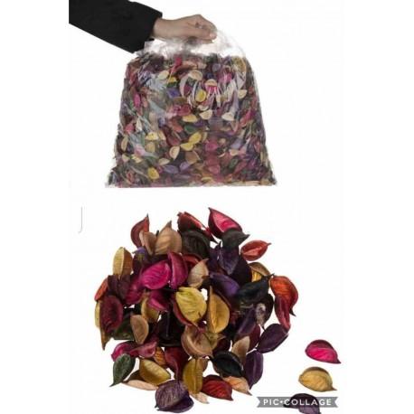 گل خشک هفت رنگ بسته 1 کیلویی
